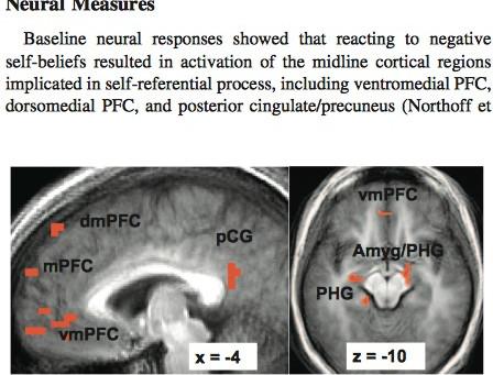 Efeitos de Mindfulness na Regulação Emocional no Transtorno de Ansiedade Social