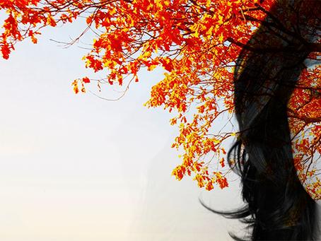 Outono: Soltando-se do que já passou, e reconhecendo impermanência