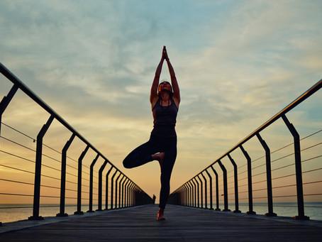 Corpo, Consciência e Conexão