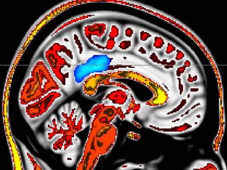 Pessoas que vivem com mais atenção plena e compaixão sentem menos dores: resultados de um estudo de