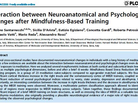 Interação entre Mudanças Neuroanatômicas e Psicológicas Após Treinamento de Mindfulness