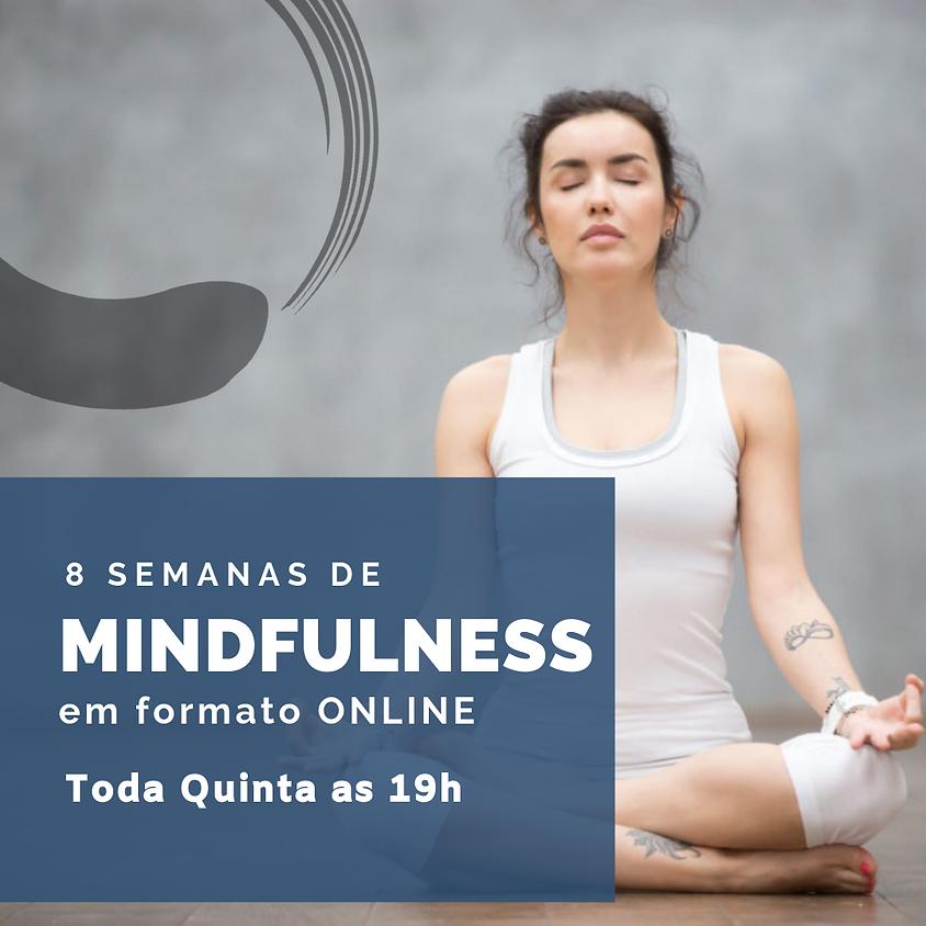 Curso de 8 semanas - Online (pra todo o Brasil) Edição 80