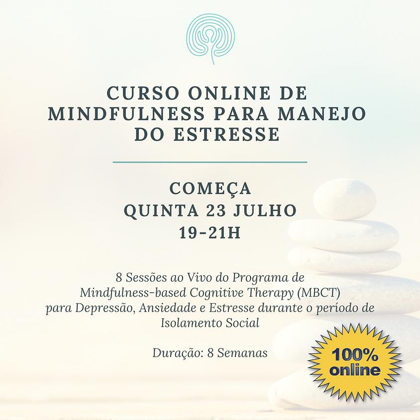 Curso Online de Mindfulness para Manejo do Estresse (pra todo o Brasil) Edição 102