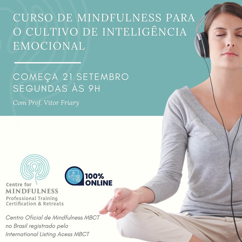 Curso de Mindfulness para o Cultivo de Inteligência Emocional (Edição 104)