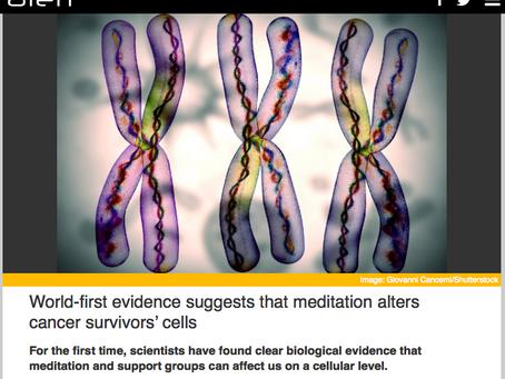 Evidência Científica sugere que Mindfulness altera as Células de Sobreviventes de Câncer