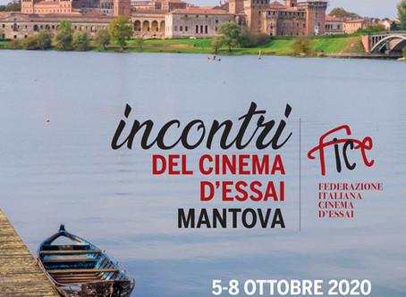 F.I.C.E. - Incontri del Cinema D'Essai 2020 - Mantova