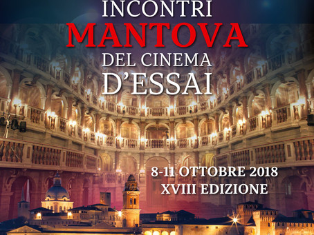 Report F.I.C.E. - Incontri Cinema D'Essai - Mantova 2018