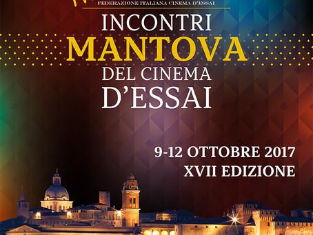 FICE - Incontri Cinema D'Essai - Mantova 2017