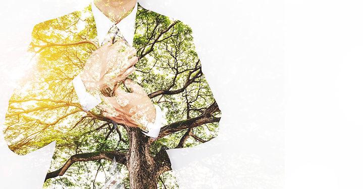 Mann mit Anzug, Bäume, Sonne.jpg