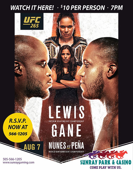 Aug_UFC265_21_22x28.jpg