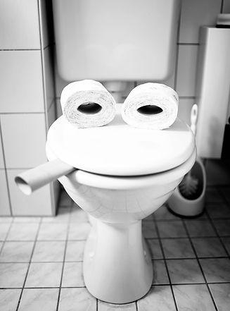 Toilet repair plumbing.jpg