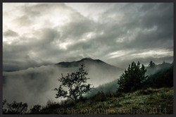 'Mountain in the Mist'