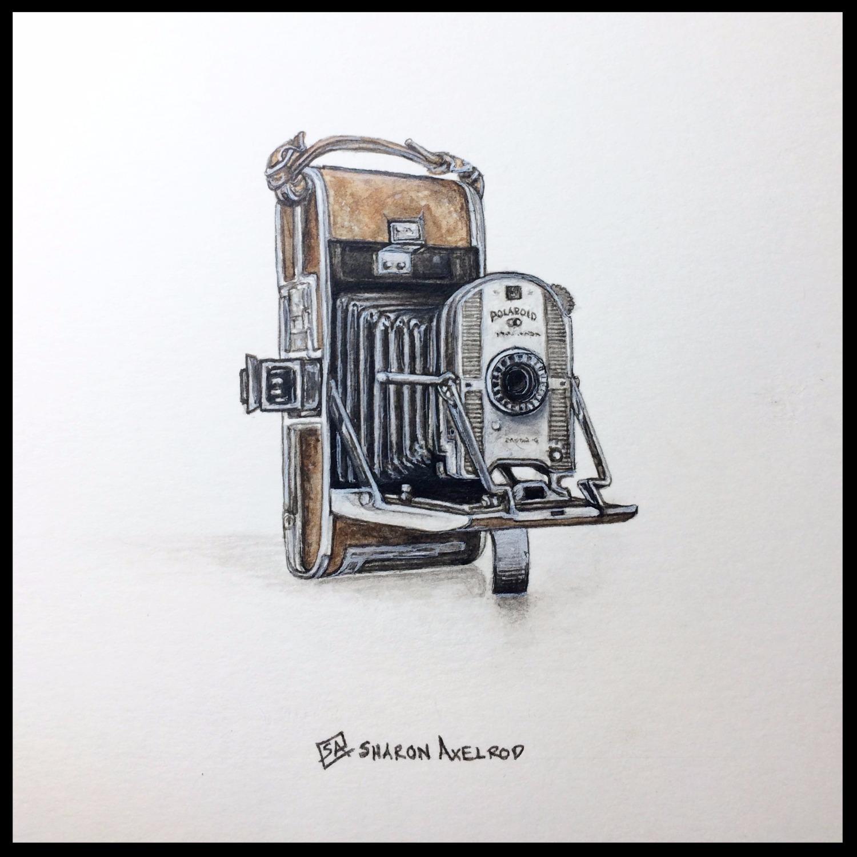 'Polaroid Study'