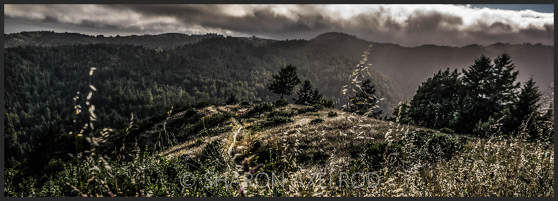 'Panoramic 'panoramic''