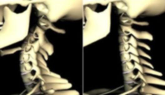 curve_neck.jpg