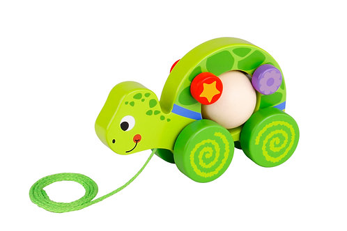 TKE003 Pull Along - Turtle