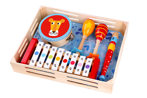TKH003 Musical Instrument Set