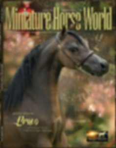 Mini horse world cover.png