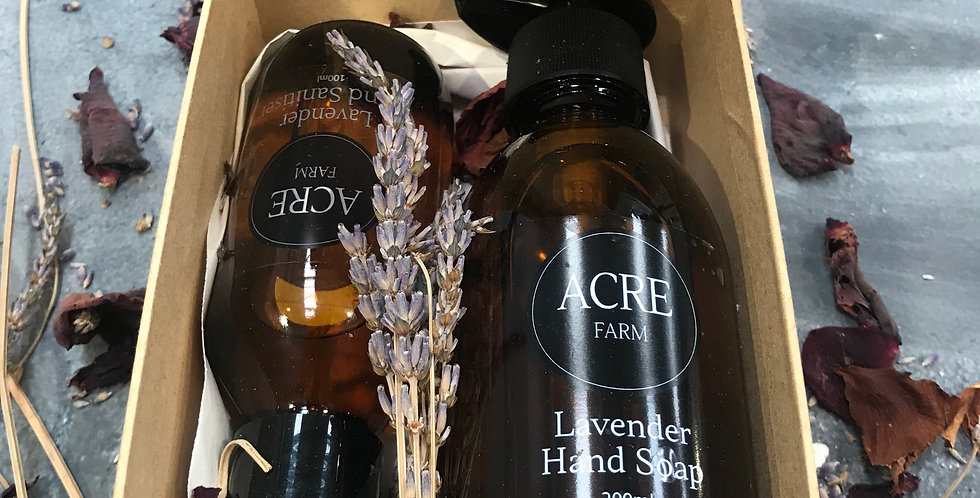Lavender Hand Soap and Sanitiser set