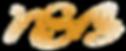 NSB logo monogram_3.png