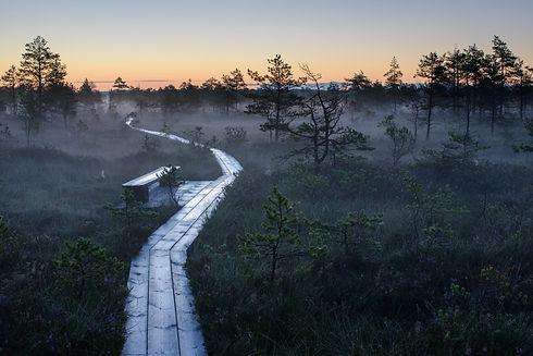 2212_Soomaa National park_Sven Zacek_686