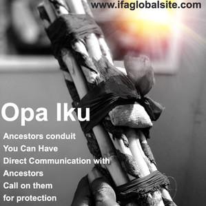 What is an Opa Iku?