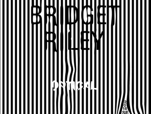 Bridget Riley Exibit Poster