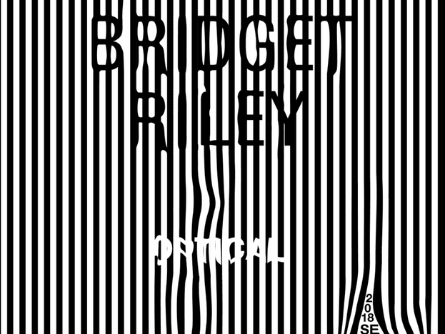 Bridget Riley Exibit Poster