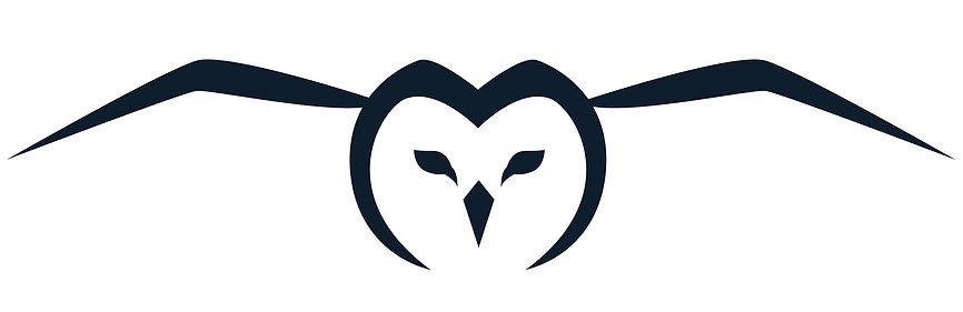 Stealth Owl.jpg