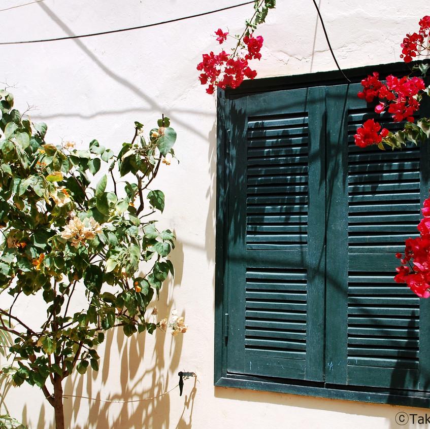 세네갈의 집