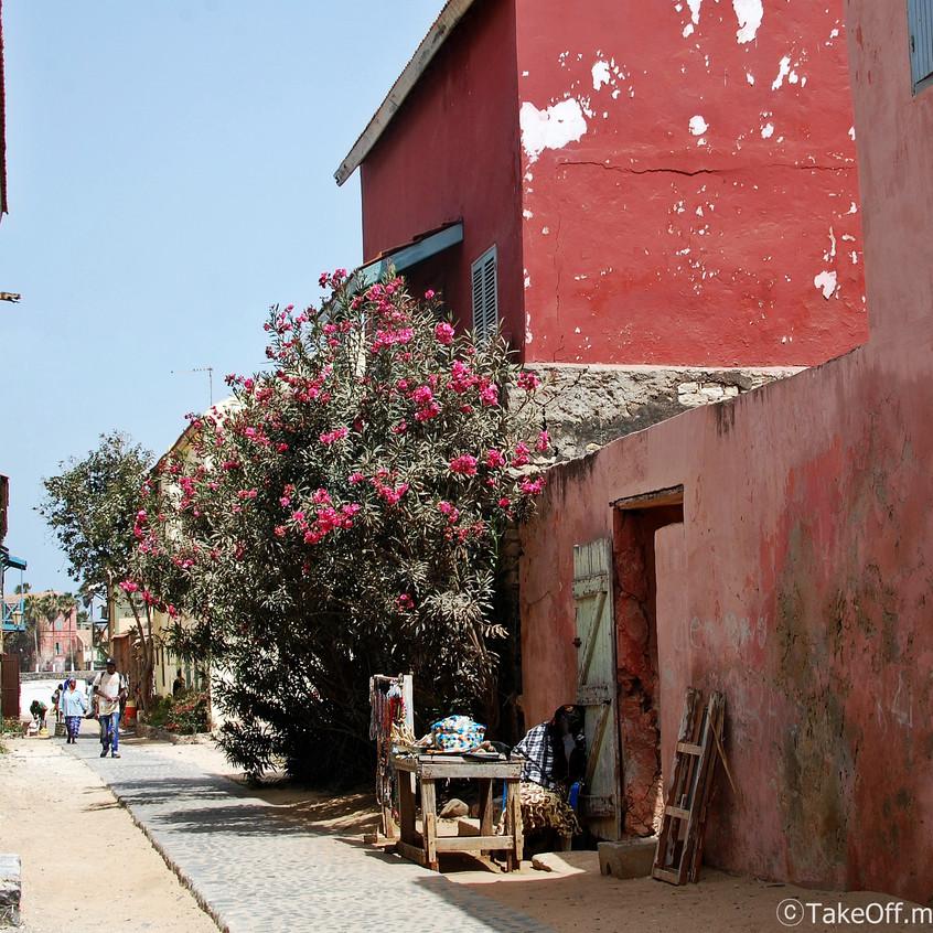 세네갈 마을2