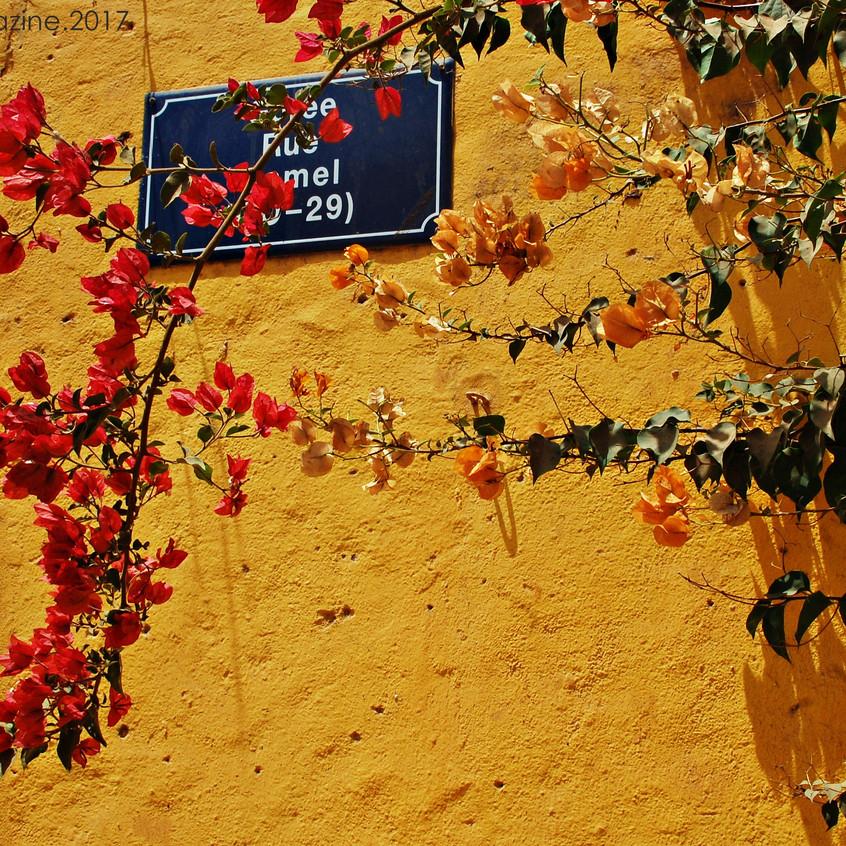 세네갈의 색감이 화려한 벽
