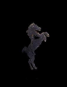 Black Horse logo.png