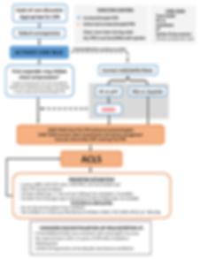 code blue algorithm.png