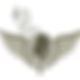 Ivana Shalom Logo - Cropped.png