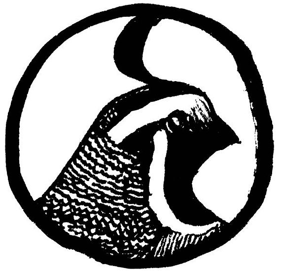 quail - line