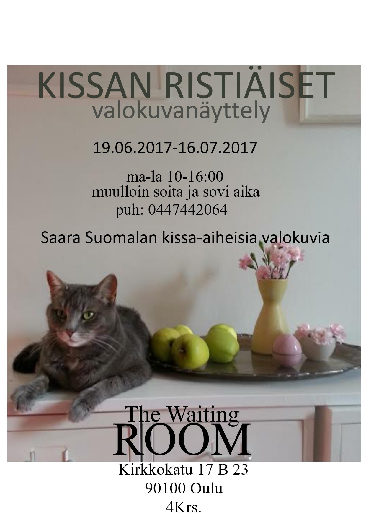 KISSAN_RISTIÄISET_3_SS
