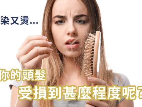 又染又燙...你的頭髮受損到甚麼程度呢?