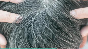 白髮拔一條倒生三條?!破解白髮迷思 好好保養你的烏黑秀髮!