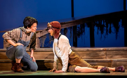 """In Review: Rosen """"superb"""" in COT's """"The Scarlet Ibis"""""""