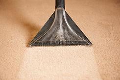 Professionally Cleaning Carpets.jpg