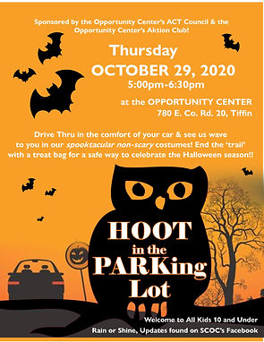 Hoot in the Park Flyer 2020 COVID.jpg
