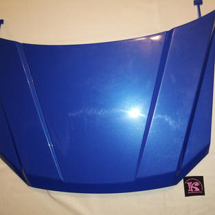 CFD53-9639 Hood, 2014 F150, Blue