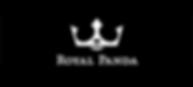royalpanda-casino-logo.png