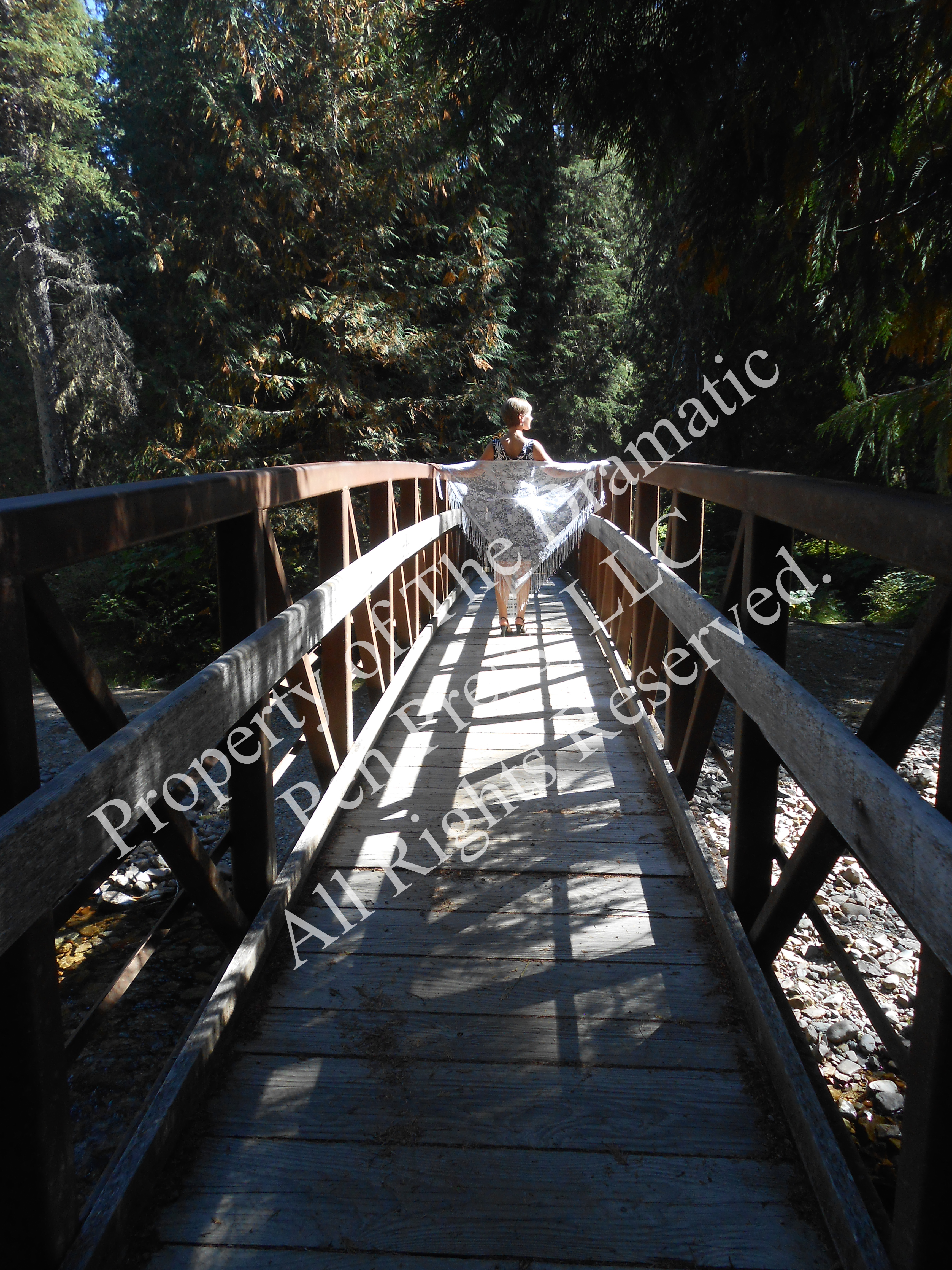 Woman in Distance on Bridge Lace