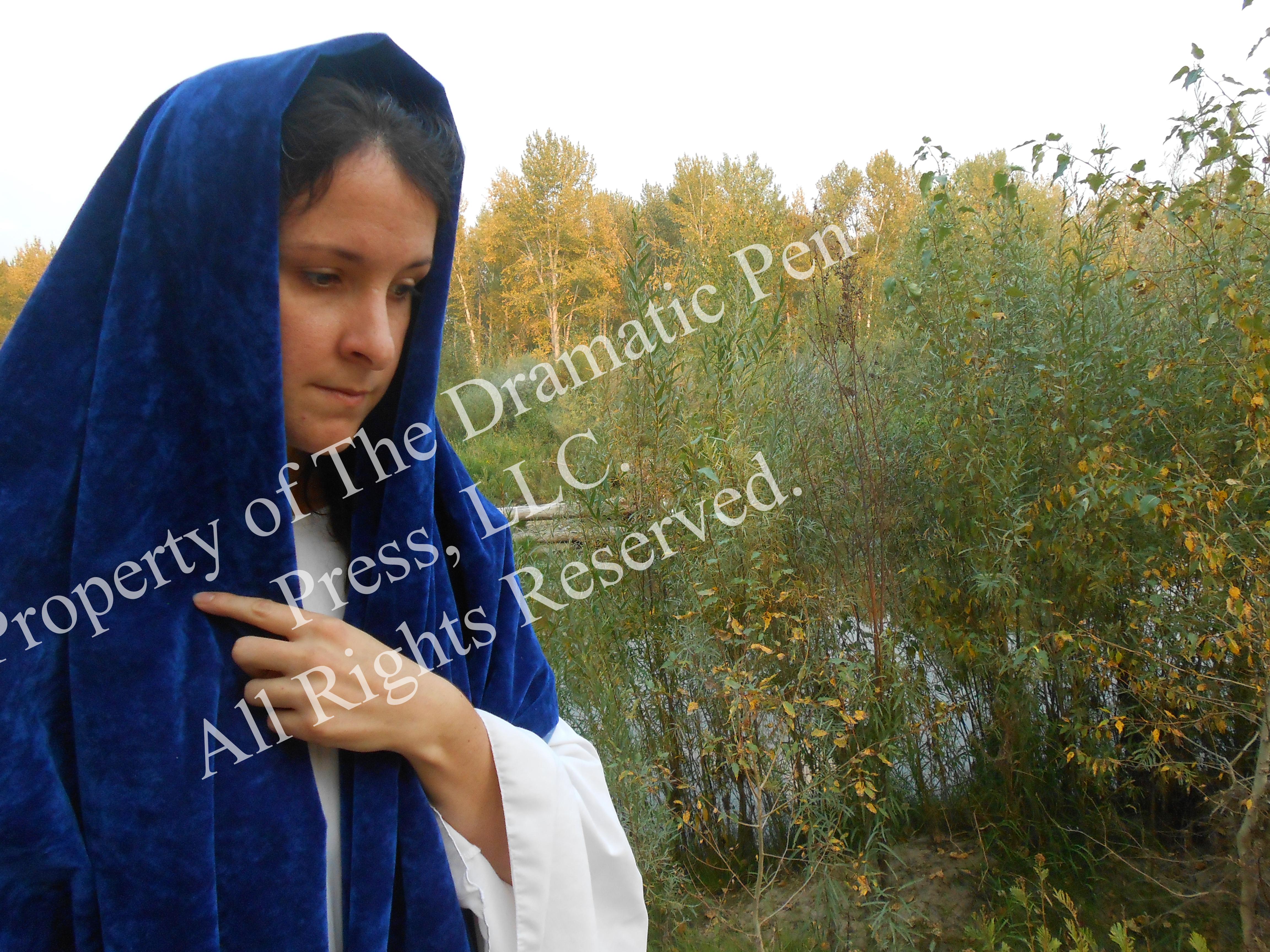 Pensive Bibilcal Woman
