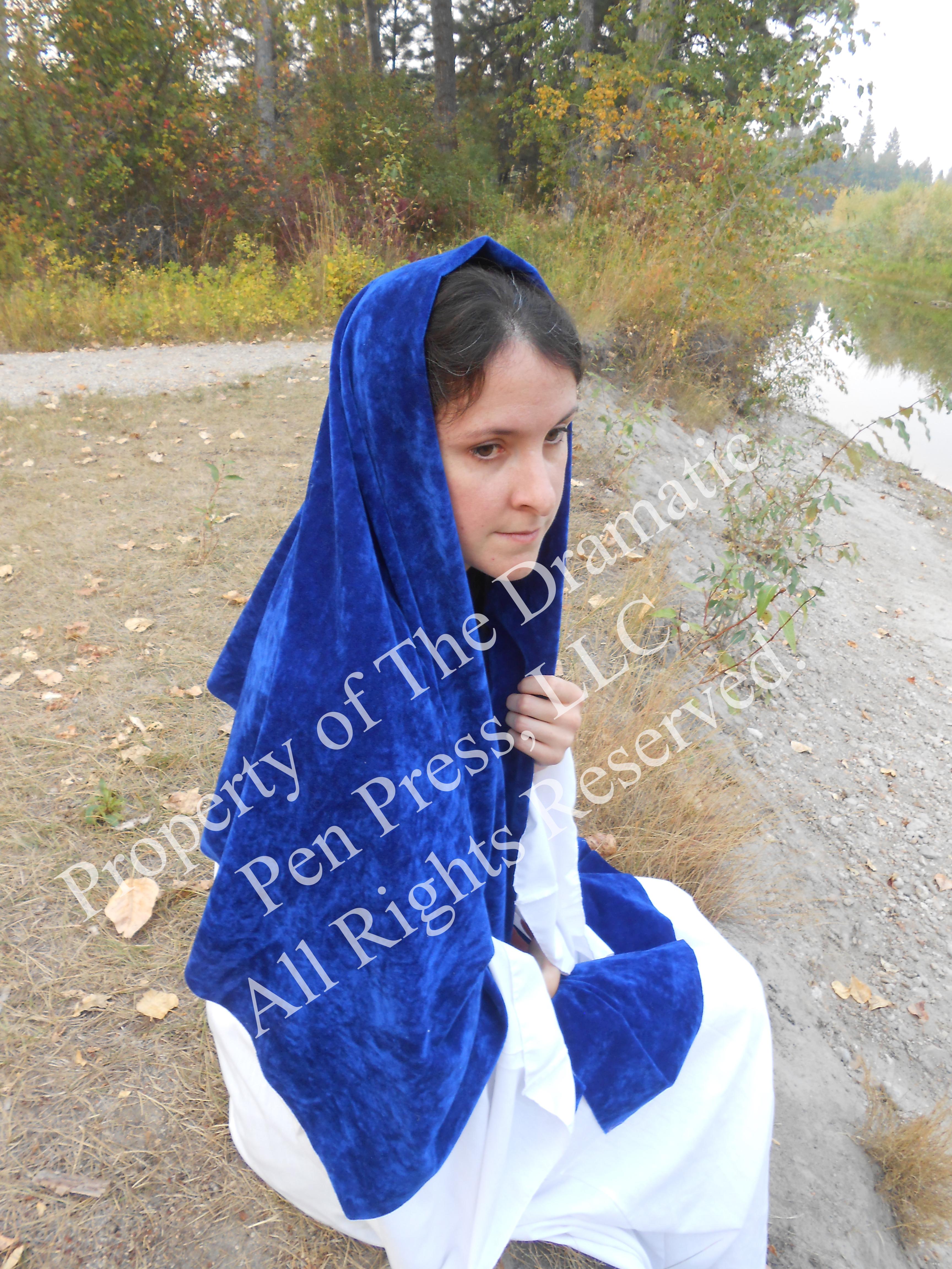 Biblical Woman Sitting Blue White