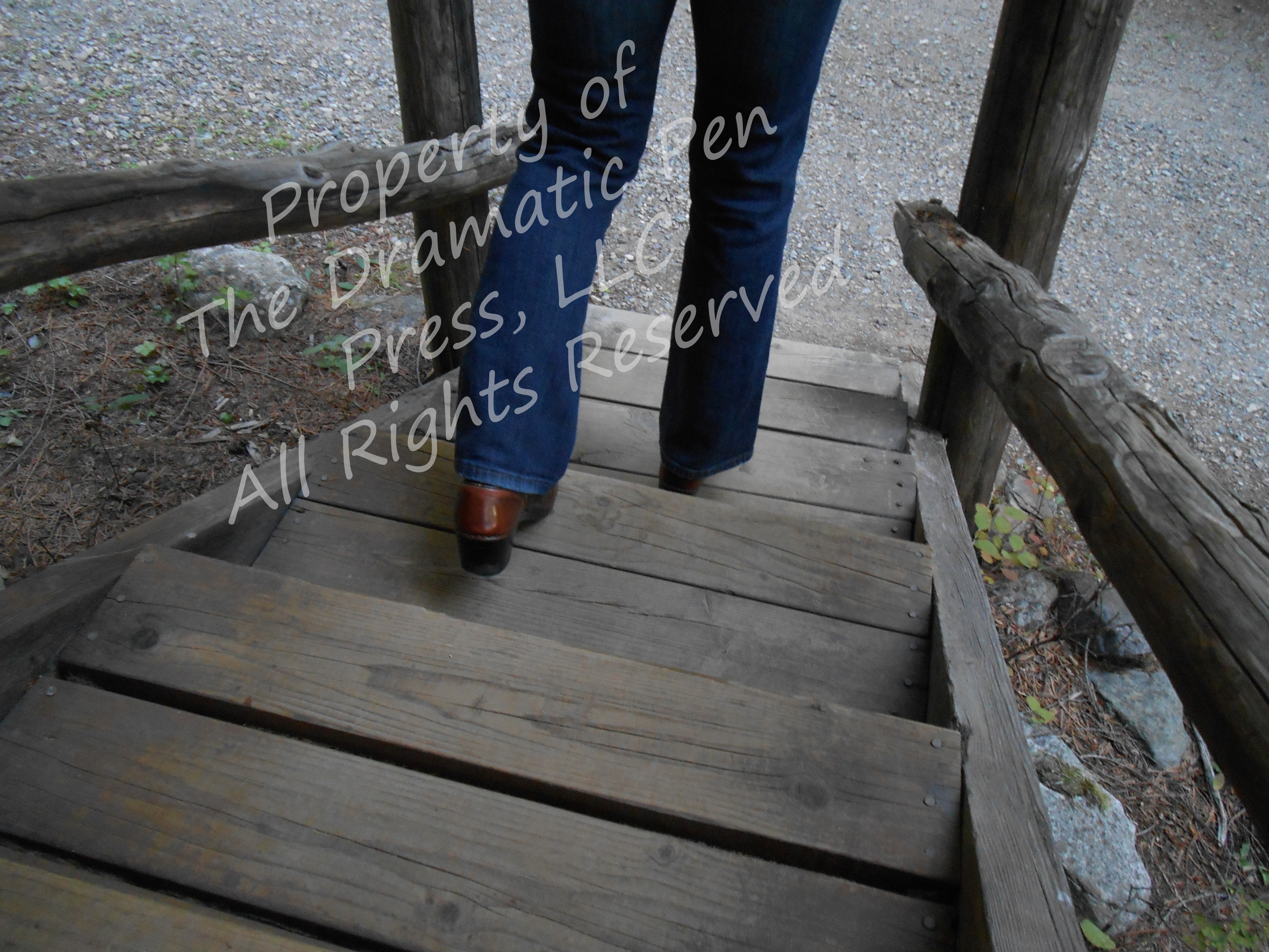 Woman's Legs Wooden Stairs