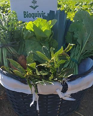 hortalizas mixtas bioquivir.jpg