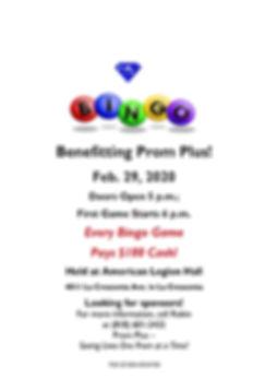 PP Bingo Flyer 2020 long.rev.jpg